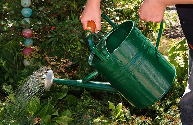 Ways of saving water when watering your garden ideas 4 homes for Important gardening tools